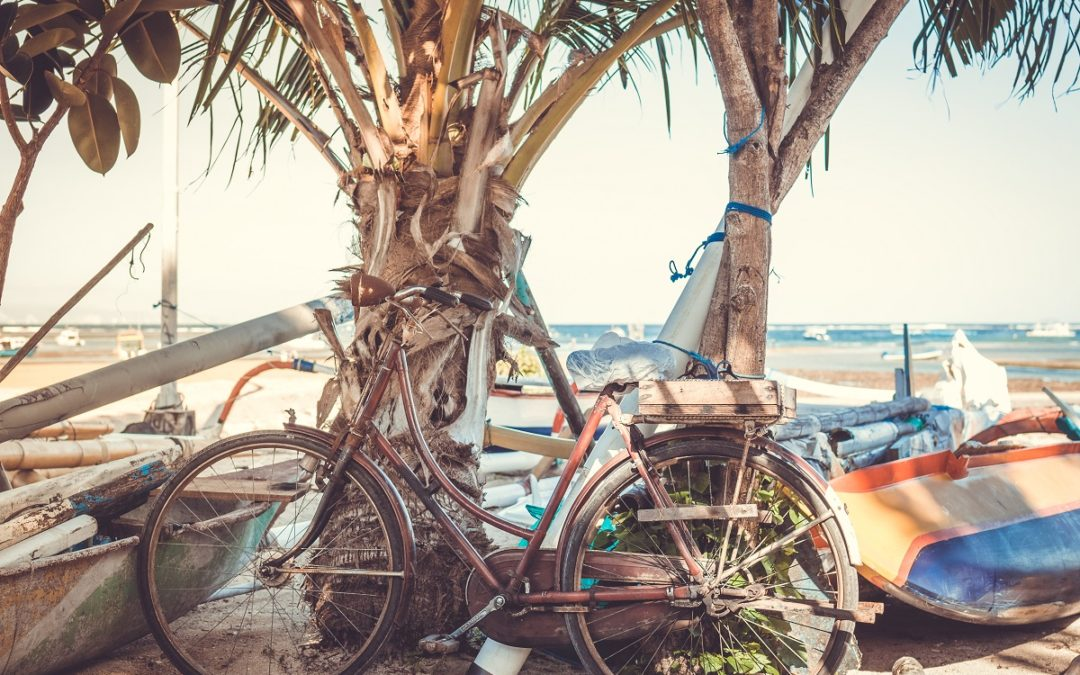 Bicycles, Beaches, Bumps and Bruises